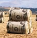 инвестиции в землю